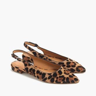 J.Crew Leopard calf hair pointy-toe slingback flats