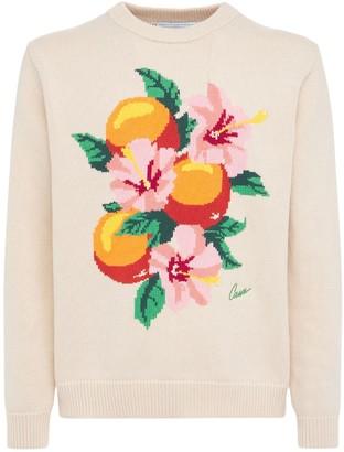 Casablanca Oranges Intarsia Cotton Knit Sweater