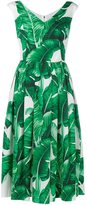 Dolce & Gabbana banana leaf print flared dress