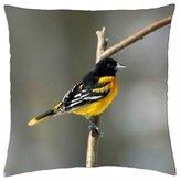 "iRocket - Oriole-Bird - Throw Pillow Cover (16"" x 16"", 40cm x 40cm)"