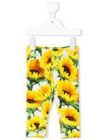 Molo sunflower print leggins