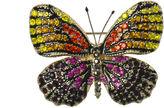 Oasis Butterfly Brooch