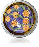 Tamahada Handcream Women's October/Fragrant Olive Hand Cream