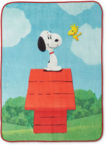 Asstd National Brand Peanuts Sunny Day Throw