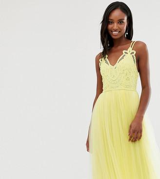 Asos Tall ASOS DESIGN Tall Premium lace top tulle cami midi dress