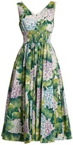 Dolce & Gabbana Hydrangea-print sleeveless cotton-poplin dress