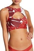 Mikoh Madagascar Solid Cutout Bikini Top