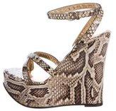 Dolce & Gabbana Snakeskin Platform Wedges