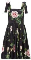 Dolce & Gabbana Tropical Rose-print Cotton-poplin Dress - Womens - Black Print