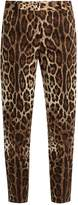 Dolce & Gabbana Leopard-print straight-leg stretch-cotton trousers