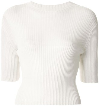 Dion Lee Round Neck Ribbed Knit Top
