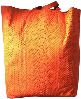 Celine Cabas Orange Python Handbags