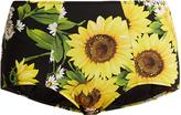 Dolce & Gabbana Sunflower-print high-rise bikini briefs