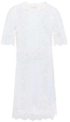 Maje Scalloped Cotton-blend Lace Mini Dress