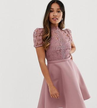 Little Mistress Petite lace top full prom mini dress in blush
