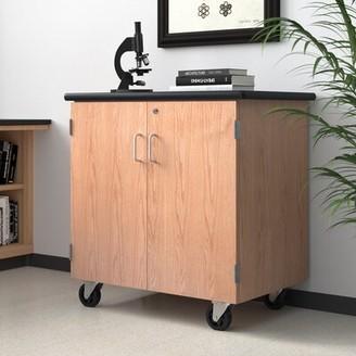 Mobile Science Lab Storage Cabinet Workstation National Public Seating