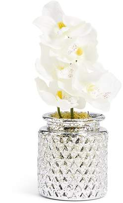 Marks and Spencer Mini Orchid in Mercury Vase