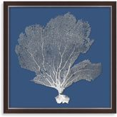 Bed Bath & Beyond Bahama Sea Fan Shadow Box