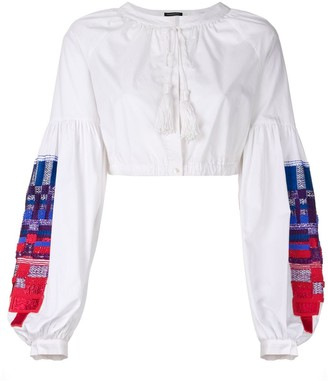 Wandering Embroidered Sleeves Cropped Blouse