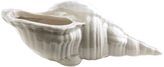 Surya Clearwater Ceramic Shell