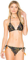 Salinas Mia Triangle Top in Black. - size XS (also in )