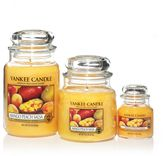 Yankee Candle Classic tea lights mango peach salsa