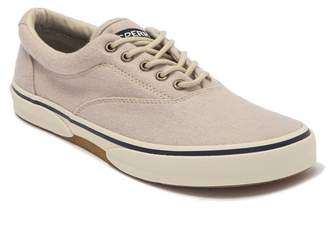 Sperry Halyard CVO Wool Sneaker