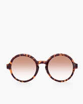 Chico's Jojo Sunglasses