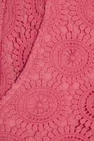Collette Dinnigan Collette by Edie cotton-lace shorts
