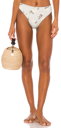 Zulu & Zephyr Greenhouse Bra Cup Bikini Bottom