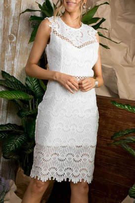 Pretty Little Things Scalloped Lace Dress