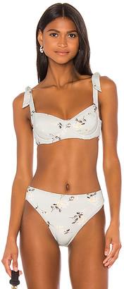 Zulu & Zephyr Greenhouse Bra Cup Bikini Top