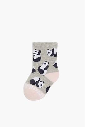 Country Road Panda Sock
