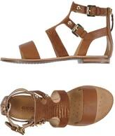 Geox Sandals - Item 11252888