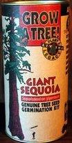 American Standard Giant Sequoia Growing Kit