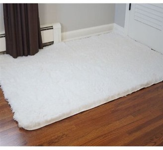 Ledoux Plush White Area Rug Ebern Designs Rug Size: Rectangle 3' x 5'