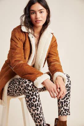 Velvet by Graham & Spencer Kailani Sueded Sherpa Jacket