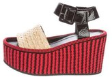 Celine Raffia Wedge Sandals