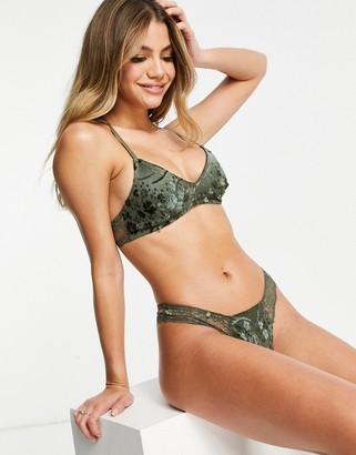 Black Limba lace lingerie thong in dark green