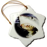 3dRose LLC orn_635_1 Sharks - Great White - Ornaments