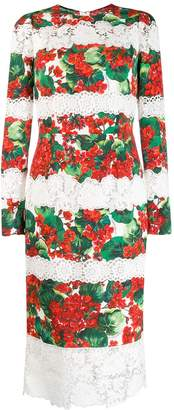 Dolce & Gabbana hydrangea print lace panelled dress