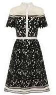 Dorothy Perkins Womens *Chi Chi London Black Collared Midi Dress- Black