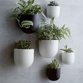 west elm Ceramic Wallscape Planters