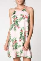 Everly Tropical Flamingo Dress