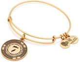 Alex and Ani Number 7 Charm Bangle