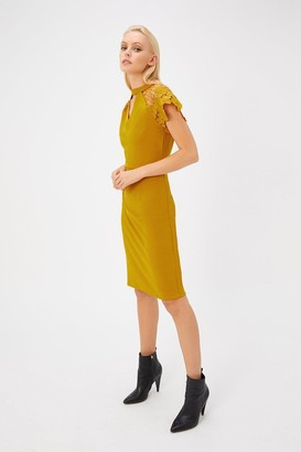 Coast Lace Cap Sleeve Shift Dress