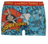Looney Tunes Warner Brothers Kids Boys Single Boxer Shorts Underwear Infant