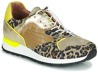 Mjus CAST women's Shoes (Trainers) in Kaki