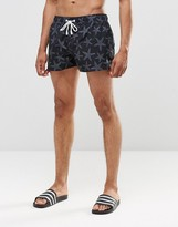 Ringspun Star Short Shorts Co-Ord