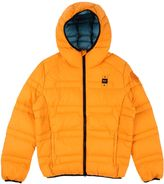 Blauer Down jackets - Item 41755110